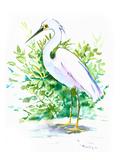 Heron 6