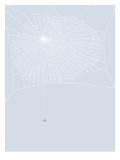Spider And Web Reproduction d'art par Jorey Hurley