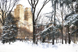 Fresh snow in Central Park