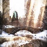 Sunlight on Central Park