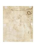 Study of a Leg  Flourish  and Doodles  1610-17