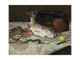 Fish (Still Life)  1864