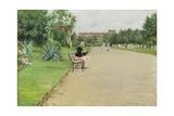 A City Park  C1887