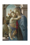 Virgin and Child with an Angel  1475-85