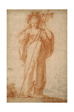 The Cuman Sibyl  C1630