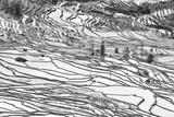 Rice Terraces in Yuanyang, Yunnan, China Papier Photo par Nadia Isakova