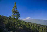 Spain  Canary Islands  Tenerife  Valle De La Orotava  View of the Pico Del Teide