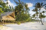 Dominican Republic  Punta Cana  Cap Cana  Juanillo Beach