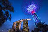 Singapore  Gardens by the Bay  Super Tree Grove and Marina Bay Sands Hotel  Dusk