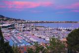Le Vieux Port  Cannes  Alpes-Maritimes  Provence-Alpes-Cote D'Azur  French Riviera  France