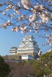 Himeji Castle (Unesco World Heritage Site)  Himeji  Kansai  Honshu  Japan