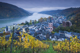 Germany  Rheinland-Pfalz  Bacharach  Elevated Town View  Autumn