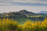 Hilltop Village Nr Asciano  Tuscany  Italy