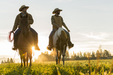 Cowboys Riding across Grassland with Moutains Behind  Early Morning  British Colombia  BC  Canada