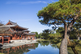 Japan  Kyoto  Uji  Byodoin Temple