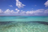 Dominican Republic  Punta Cana  Parque Nacional Del Este  Piscina Natural   a Shallow Sandbank