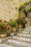St Paul De Vence  Alpes-Maritimes  Provence-Alpes-Cote D'Azur  French Riviera  France