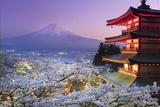 Japan, Yamanashi Prefecture, Fuji-Yoshida, Chureito Pagoda, Mt Fuji and Cherry Blossoms Papier Photo par Michele Falzone