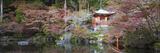 Japan  Kyoto  Daigoji Temple  Bentendo Hall and Bridge