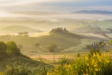Countryside View with Farmhouse and Hills  Tuscany (Toscana)  Italy