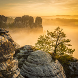 Bastei  Saxon Switzerland National Park  Saxony  Germany