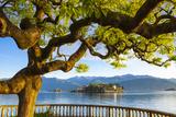 The Idyllic Isola Dei Pescatori and Isola Bella  Borromean Islands  Lake Maggiore  Piedmont  Italy