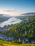 Germany  Rhineland Palatinate  Bacharach and Burg Stahleck (Stahleck Castle)  River Rhine