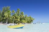 Motu Pit Aau  Bora Bora  Society Islands  French Polynesia