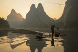 Cormorant Fisherman Throwing Net on Li River at Dawn  Xingping  Yangshuo  Guangxi  China