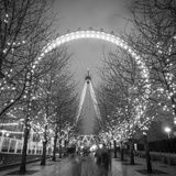 London Eye (Millennium Wheel)  South Bank  London  England