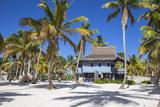Dominican Republic  Punta Cana  Parque Nacional Del Este  Saona Island  Canto De La Playa