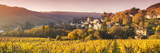 Pernand-Vergelesses and its Vineyards  Cote D'Or  Burgundy  France