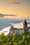 Germany  Rhineland Palatinate  Bacharach  Burg Stahleck (Stahleck Castle)  River Rhine