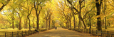 Usa  New York City  Manhattan  Central Park  the Mall