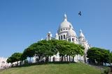 The Sacre Coeur  Paris July 7  2013