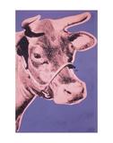 Cow, 1976 (pink & purple) Reproduction d'art par Andy Warhol