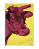 Cow  1966 (yellow & pink)