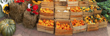 Assorted Gourds and Small Pumpkins at Farm Stand  Route 34  Colts Neck Township