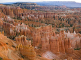 Hoodoo Rock Formations in a Canyon from Sunset Point  Bryce Canyon National Park  Utah  Usa