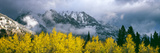 Aspen Trees with Mountain Range in the Background  Mount Saint John  Grand Teton National Park