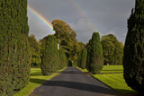 Rainbow over the Yew Walk in Emo Court Gardens Emo Village  County Laois  Ireland