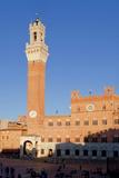 Italy  Tuscany  Sienna - Piazza Del Campo  Palazzo Pubblico  Torre Del Mangia