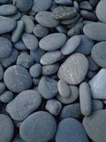 Beach Rocks on Rialto Beach  Olympic National Park  Wa