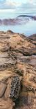 Details of Rock on the Coast  Las Rocas Beach  Baja California  Mexico