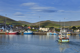 Fishing Harbour in Dingle Town  Dingle Peninsula  County Kerry  Ireland