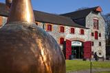 Copper Still at Midleton Whiskey Distillery  Midleton  County Cork  Ireland