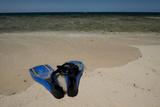 Snorkel Set on the Beach  Caribbean Sea  Belize
