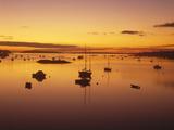 Pleasure Boats Moored in Southwest Harbor before Sunrise  Mt Desert Island  Maine