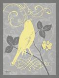 Grey & Yellow Bird III