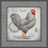 Farm Fresh Eggs I